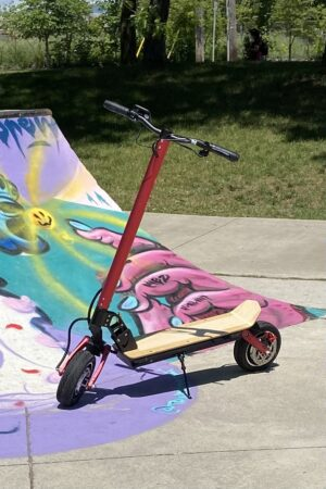 Joy Ryde E-Scooter at a skate park.